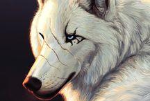Wolf'$