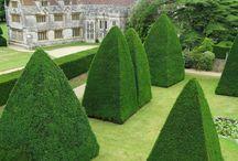 Gardens&cedars