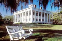 Old Southern Plantations / by Clydette Hayes