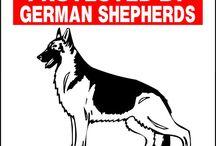 German Shepherd / Things for my babies