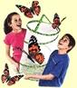 Butterflies, Moths & other! / by Margie Hillenbrand