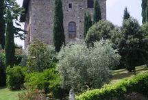 Travel Tuscany - Viaggiare in Toscana / All'interno del villaggio Oasi Maremma troverai un team di animatori che organizzerà giochi ed attività divertenti per tutta la famiglia. www.oasimaremma.it #OasiMaremma