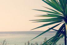 •Voyage en Grèce• / Petit paradis grecque en photo. Un territoire hostile pourvu de sentiers de terres, de cyprès, de criques d'eau turquoise et d'Oliviers. De nombreux villages blancs jettent leurs amarres dans l'eau cristalline. Passer 30 jours entres le tzatsiqui et les souvlàkis rien de mieux pour purger avant la rentrée!