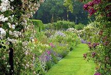Θα υπάγω εις τον κήπον...