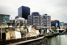 Wellington / Interesting images of Wellington SIghts & Attractions