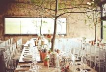 handfasting celebration / by Claudia Padilla
