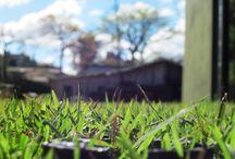 Ecotelhado - nossos Ecopavimentos / O Ecopavimento é um pavimento a ser colocado sobre superfície permeável, permitindo a passagem de água e ar e evitando o acúmulo de água na superfície. É constituído de grelhas alveoladas de plástico reciclado. Suporta o peso compatível à base na qual será instalado.