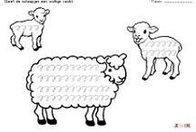 werkbladen schapen