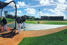 2016 #BravesST / All of the best photos from the Braves at Spring Training. Follow along on our Twitter and Instagram: @Braves