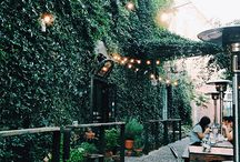 Cafe / カフェ