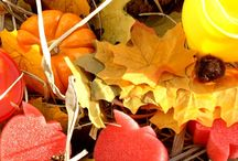 Preschool Activities - Fall/Autumn