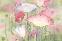 Water color and drawings