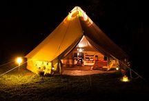 Camping / by Cari Ard