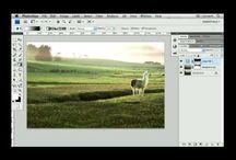 Photoshop Tutorials / by Marie Stubbs