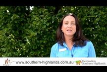 This Week in the Highlands / Each week the Team from Destination Southern Highlands discuss the week/weekend of Events.