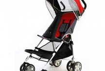 Special Needs Stroller