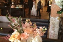 Willey Hutson Wedding / by Leslie Willey