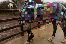 pretty horse things