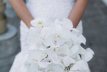 Wedding Bouquet Inspiration / We have carefully curated these elegant bouquets and hope you find them an inspiration for your wedding planning. / by Cobb Energy Centre