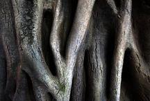 Rocaille, Rusticage, Ferrocement Faux Bois in concrete / Travail des rocailleurs travaillant le ciment armé pour lui donner l'apparence du bois naturel.