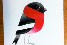 ptaki/birds