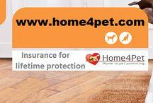 home4Pet  Pet-services