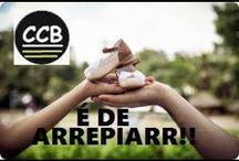 TS ccb