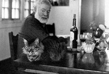 Authors and their Pets
