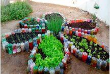 jardinagem e quintal.