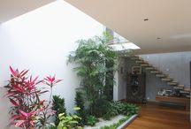Gardens/interior gardens