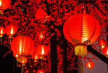 Chinese Festivals / by WildChina