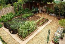 ガーデン畑