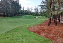 Laguna Phuket Golf Course