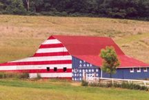 Patriotic USA! / Celebrate our red, white, and blue. Celebrate our stars and stripes. God bless the USA.