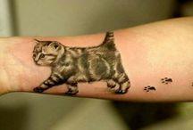 Pet Tattoo / Pet Tattoo