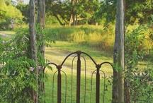 Exterior Design - Gates