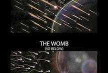 Space/Cosmos