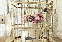 Birdcages / by Jen Waugh