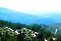Mountain Breeze Resort-Chalets / Mountain Breeze Resort in Latakia, Qlayla- Syria by Ark-Kassam Architects