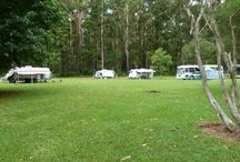 Camping north of Sydney. Pet friendly