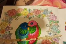 my colouring projects