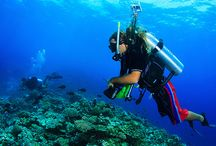 Water Sports in the Indian Ocean! / At Diamonds Resorts high qualified scuba diving instructors will accompany you at the discovery of the amazing underwater world of the Indian Ocean!