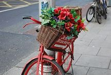 Bicycles w/baskets