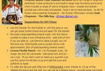Bush Tucker DIY & Catering / Bush Tucker DIY & Catering