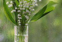 Blumen deko/ Bouquet
