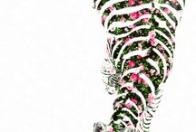 ANIMAL PRINT in love / All about animals, textures and more