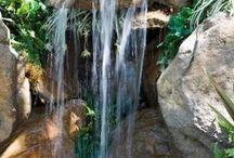 Backyard ponds & water things