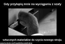 Reko ;)