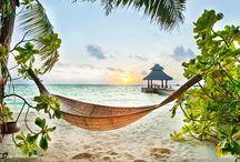 Malediven - Die Perlenkette im indischen Ozean / Naturweiße Strände, Palmen soweit das Auge reicht und das sagenhafte klare Blau des Meeres. Die 1100 Inseln laden zum perfekten Erholungsurlaub ein!