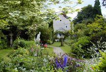 Cascades Garden in Summer / Summer Breaks in Derbyshire